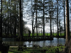 2008 03 Emilia Romagna - Parma - Sant'Agata - Casa Verdi - Il Parco_287 (Kapo Konga) Tags: italia emiliaromagna santagata