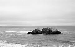 Seal Rock, Lands End, SF (bclook) Tags: sanfrancisco seascape monochrome landscape noiretblanc schwarzweiss leicam6classic summicron50mmf2 filmisnotdead fujineopanacros100 istillshootfilm bwfp
