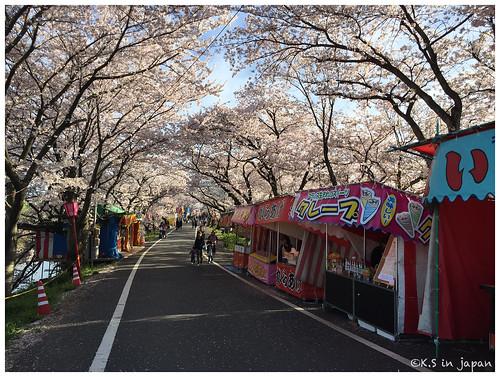 20150404-0406_岐阜。旅行記.38