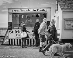 St Mawes_1.jpg (Colin Dorey) Tags: uk blackandwhite bw dog fish monochrome blackwhite cornwall harbour quay april visitors stmawes quayside breakwater 2016 fishstall holidaymakers