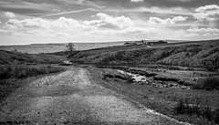 Broadleys Gate , Newbiggin . (wayman2011) Tags: uk tracks farms streams dales pennines lightroom countydurham teesdale newbiggin bwlandscapes canon50d rabyestate wayman2011