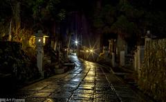 meditation -  - (Art Fiveone) Tags: leica rain japan landscape nightscape nightshot summicron koyasan  nightview   worldheritage wakayama  okunoin   kobodaishi kukai    mtkoya