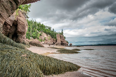 Bay of Fundy (angie_1964) Tags: ocean sea summer sky canada beach nature water weather clouds landscape outdoors newbrunswick shore bayoffundy nikond300 nearhopewellrocks
