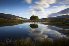 My Tree Mojo (Lisa Hawkins Photography) Tags: new light tree clouds canon reflections landscape golden zealand valley jetstar nevis 6d 1635mm