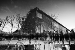 180 (you feel me) Tags: trees sky blackandwhite bw reflection building nature water monochrome architecture outdoors blackwhite spring stream photographer fineart monotone series 180 greyscale greytones runkewitz