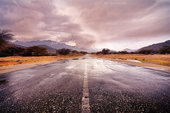 All The Way To Clouds (A. Shamandour) Tags: road trip trees winter mountains color art rain yellow clouds lens landscape photography photo spring rocks desert cloudy wide line photograph saudi arabia taif