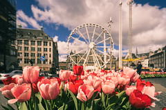 Round and round (miguel_lorente) Tags: street city sky holland netherlands amsterdam festival clouds square iamsterdam cityscape tulips dam