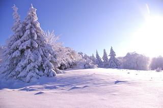 Weihnachten heißt Liebe schenken ...  Frohe Weihnacht - christmas means to give love - Merry christmas