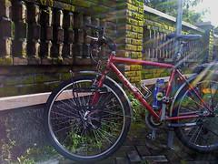 Morning Sunshine (Raditya Jati) Tags: vacation bicycle sport village commuting yogyakarta jogloabang aprobicycle