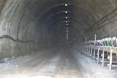 Miniera di salgemma di Realmonte: discesa in galleria (costagar51) Tags: italy italia natura sicily sicilia agrigento realmonte