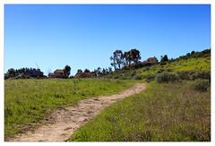 Path (mhocter) Tags: california park canon eos path canoneos ef losangelescounty granadahills canonef ef247028l canonef247028l canoneos5dmarkii omelvenypark 5dmarkii 5d2 canon5dmarkii