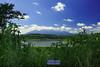 Jatibarang Dam (Iwan Madari) Tags: nature landscape natural dam waduk bendungan portscape semarangindonesia jatibarang madariphotowork semarang2016 madariphotowork2016