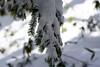 冬 - Winter (ken_visto) Tags: winter japan landscape sapporo hokkaido 北海道 veduta 冬 札幌 d800 景色