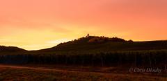 Sonnenuntergang (Chris9319) Tags: sunset orange clouds sonnenuntergang natur hell wolken schloss landschaft sonne burg trauben wengert strase