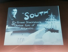 Surviving South...The Endurance...of Polar Men and Dogs and a Cat (eriagn) Tags: antarctica shackleton ernestshackleton endurance voyage frankhurley archives film photography silentmovie filmfootage rare men dogs ice snow seaice icebergs survival cold freezing nature belowfreezing epicfootage epicsurvival againstallodds team teamwork expedition exploration mapping adventure ngairehart eriagn travel history historical southpole southgeorgia elephantisland epic photographer mrschippy cat royalgeographicalsociety polar winter prunusblossom prunus theme iphone