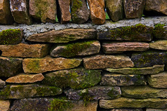 All Stacked Up. (ereid88) Tags: uk england green stone daylight moss outdoor stonework stonewall foilage