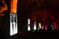 night art (christophhornung142) Tags: red green rot art colors yellow night licht purple nacht sony illumination gelb blau farbe bume mannheim violett luisenpark langebelichtung strucher strichmnnchen winterlichter sonyalpha6000 stimmunglichtknstler