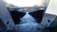 Fish Ladder Video Camera System