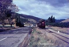 Dj passing Waenga in the Cromwell Gorge bound for Cromwell. (Wheel5800) Tags: dj rail gorge cromwell