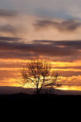 Lookin' Out My Back Door... (russell_w_b) Tags: sky sunrise cumbria cumberland penrith edenvalley