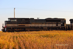 NS 1065 Bellmont IL (waltersrails) Tags: railroad heritage train illinois ns norfolk trains southern unit emd