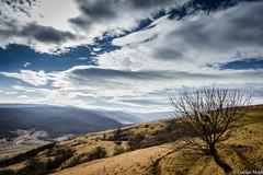 Drumetie prin Faget (Lucian Nuță) Tags: nature forest landscape romania cluj clujnapoca faget padurea