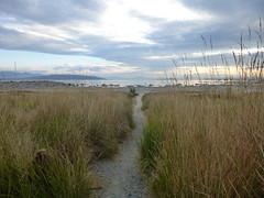 Mono Lake (1) (christianzink) Tags: usa lake west mono coast roadtrip amerika rundreise staaten westkste vereinigte traumurlaub