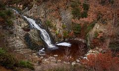 Cascade de Bayehon (ditchfla) Tags: belgique cascade malmedy hautes fagnes bayehon