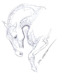caballo a lapicero (ivanutrera) Tags: horse animal pen caballo sketch drawing draw dibujo lapicero boligrafo dibujoalapicero dibujoenboligrafo