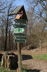 Wohin nun? (julia_HalleFotoFan) Tags: kyffhuser naturpark wegweiser kyffhuserberglauf