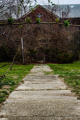 KPPC Winter 2016 (irvingwhitney) Tags: park newyork longisland kings abandon asylum kingsparkpsychiatriccenter kppc