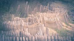 Pastel beach (Jean-Luc Peluchon) Tags: sea mer france beach fence island sand pastel sable barrier plage ileder barrire palissade fz1000