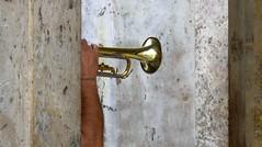 P1010466 (sandrodegasperi) Tags: musician torino trumpet turin tromba musicista piazzacastello girovago