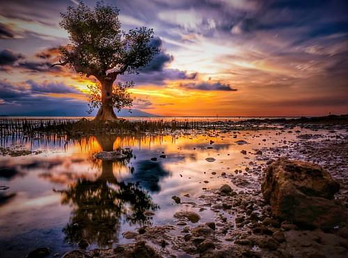 Sunset at Bungin Island at alas Sumbawa #ntb #wallofindonesia  #indonesia #u_phy #infotourismindo #switcheyesnap #loveroyal3 #fp_society #natgeo #instanusantara  @instanusantara @infotourismindo #indonesia_photography @indonesia_photography #HDR #hdr_flai