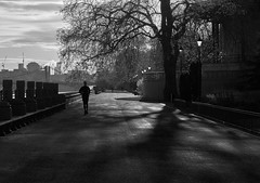 Battersea Park (DaveWilliams) Tags: bridge bw london thames chelsea shadows riverside londonist
