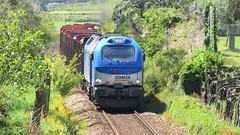 Comboio Internacional 48844 ( Comsa Rail 335-001 ) - Quinties - Linha Minho (ruicmsilva) Tags: rail madeira comboio 4000 minho tuy 5001 comsa takargo 335001 celbi quinties linhaminho
