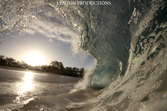 IMG_0159 copy (Aaron Lynton) Tags: beach canon big barrel wave 7d spl makena shorebreak lyntonproductions