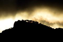 (Giramund) Tags: sunset sky italy mountain tree clouds dark capri evening