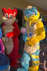 _DSC9767 (Acrufox) Tags: midwest furfest 2015 furry convention december hyatt regency ohare rosemont chicago illinois acrufox fursuit fursuiting mff2015