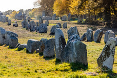 Carnac (quibe5675) Tags: france site bretagne menhirs morbihan carnac humanit cimetire dolmens architecte prhistoire batisseurs alignements mgalithes commoration rpertori