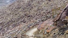P.S.-16-149 (schmikeymikey1) Tags: plants mountain rock landscape bush path