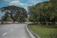 Abandoned Hospital (YocaMariano) Tags: road tree green abandoned nature hospital landscape path philippines fujifilm hdr pampanga naturephotography landscapephotography fujifilmxt1