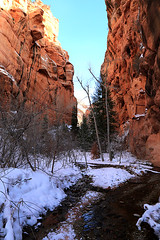 Spring Creek Narrows (Bob Palin) Tags: winter usa snow cold southwest water 1025fav 510fav canon landscape utah december outdoor hiking 100v10f hike streams ironcounty club100 100vistas instantfave canonef24105mmf4lisusm springcreekcanyon kanarraville orig:file=2015122804165
