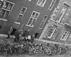 (frscspd) Tags: cambridge window bike architecture pentax takumar corpuschristi bikes xp2 stcatharines fromthewindow ilfordxp2 corpus 58mm mx ilford pentaxmx trumpingtonstreet corpuschristicollege stcatharinescollege takumar58mm ilfordxp2400bw 20151521 79490021 aforestofbikes