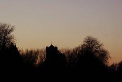 Evening sky (tad2106 - Trudie Davidson Photography) Tags: sunset sky church field evening twilight dusk sillouette cambridgeshire rampton