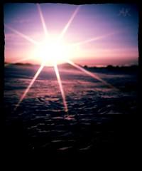 Star (arnthorr) Tags: winter sun tree ice iceland ar tr ragnar brfell starfilter vetur sl bstaur arnr sigmar slei vatni arnthorr arnrragnarsson arnthorragnarsson bauluvatn iceslade sigmarogragnar