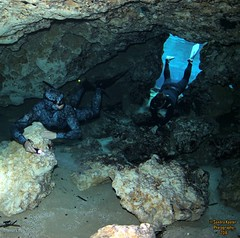 IMG_1931 (2) (SantaFeSandy) Tags: life camera new beautiful loving canon fun carr high day air dive lord buddy hires most freediving springs ballroom be thankful powell lamar zachary cave years swimmers wes cavern soon mauricio maurizio ginnie 2016 freedivers january1 restrepo ikelite gopro breathhold sandykoster sandrakosterphotography sandrakosterphotographycom