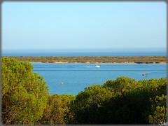 Playa de San Miguel (Huelva) (Spain) (sky_hlv) Tags: espaa praia beach rio river andaluca spain europa europe huelva playa verano atlanticocean pinares riopiedras costadelaluz cartaya oceanoatlntico playadesanmiguel