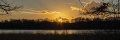 Zonsondergang Heide (Wim Smet) Tags: winter sunset zonsondergang heide kalmthout