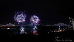 View from Coit Tower - Bay Lights Re-Lighting and Super Bowl City Fireworks Show - 013016 - 04 (Stan-the-Rocker) Tags: sanfrancisco sony coittower northbeach embarcadero ferrybuilding telegraphhill nex sanfranciscooaklandbaybridge sfobb sb50 baylights sel1855 stantherocker